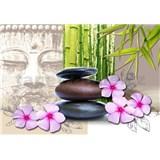 Vliesové fototapety kamene s kvetmi rozmer 368 cm x 254 cm