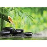 Vliesové fototapety lávové kamene a bambus rozmer 368 cm x 254 cm
