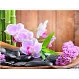 Vliesové fototapety orchidea kamene, rozmer 312 x 219 cm