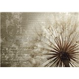 Vliesové fototapety Dandelion rozmer 368 cm x 254 cm
