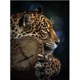 Vliesové fototapety jaguár rozmer 184 cm x 254 cm
