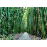 Vliesové fototapety bambus Vietnam rozmer 368 cm x 254 cm
