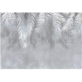Vliesové fototapety listy papradie rozmer 368 x 280 cm