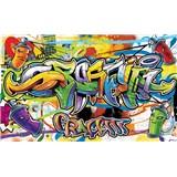 Vliesové fototapety Graffiti rozmer 368 cm x 254 cm