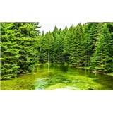 Fototapety lesní jazero, rozmer 368 cm x 254 cm