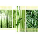 Vliesové fototapety bambus koláž, rozmer 312 x 219 cm