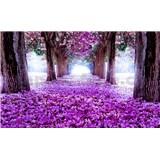 Fototapety alej květů