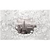 Vliesové fototapety 3D New York čierno-biely, rozmer 416 cm x 254 cm