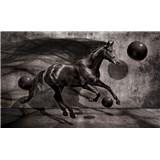 Fototapety 3D kôň, rozmer 368 cm x 254 cm