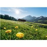 Vliesové fototapety Hefele Alpský raj, rozmer 400 cm x 280 cm