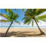 Vliesové fototapety Hefele dni v Karibiku, rozmer 450 cm x 280 cm
