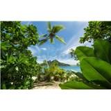 Vliesové fototapety Hefele cesta do džungle, rozmer 450 cm x 280 cm