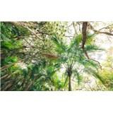 Vliesové fototapety Hefele dotyk džungle, rozmer 450 cm x 280 cm
