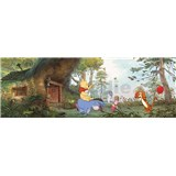 Fototapeta Disney Medvedík Pú