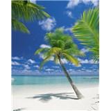 Fototapeta Ari Atoll, rozmer 184 x 254 cm