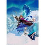 Vliesové fototapety Disney Frozen Elsina mágia rozmer 200 cm x 280 cm