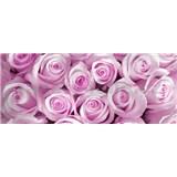 Vliesové fototapety ruže ružové, rozmer 250 x 104 cm