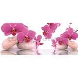 Vliesové fototapety orchidea s kameňmi, rozmer 250 x 104 cm