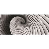 Vliesové fototapety lastúra sivá, rozmer 250 x 104 cm