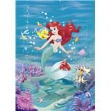 Fototapety Disney Malá morská víla Ariel spieva rozmer 184 cm x 254 cm