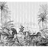 Vliesové fototapety Disney Lion King monochrome rozmer 300 cm x 280 cm