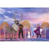 Vliesové fototapety Disney Frozen II podzimní les rozměr 400 cm x 280 cm