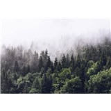 Fototapety opar nad lesom rozmer 366 cm x 254 cm