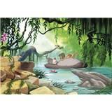 Fototapety Disney Jungle Book plávanie s Balúom rozmer 368 cm x 254 cm