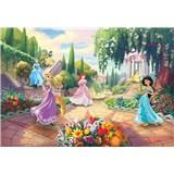 Fototapety Disney Princess park rozmer 368 cm x 254 cm