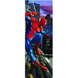 Fototapeta Spiderman NYC