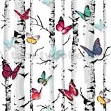 Tapety na stenu Freestyle brezy s farebnými motýlikmi