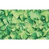Samolepiace tapety zelené lístie 90 cm x 15 m