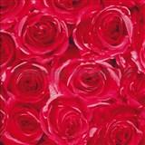 Samolepiace tapety ruže červené 45 cm x 15 m