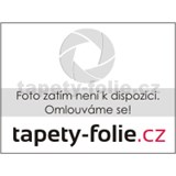 Samolepiace fólie Zebrano tmavo sivé - 45 cm x 15 m