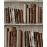 Vliesové tapety na stenu Facade knižnica svetlá