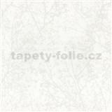 Vliesové tapety na stenu Graphics Alive - konáre stromov biele - POSLEDNÝ KUS