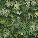 Vliesové tapety na stenu Greenery palmové listy zelené
