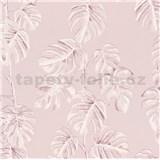 Vliesové tapety na stenu Greenery fíkusové listy ružové na ružovom podklade