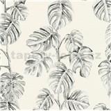Vliesové tapety na stenu Greenery fíkusové listy čierne na bielom podklade