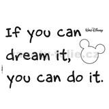 Samolepky na stenu Disney You Can do it rozmer 50 cm x 70 cm