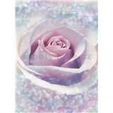 Vliesové fototapety ruža rozmer 184 cm x 248 cm