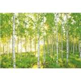 Vliesové fototapety les brezy rozmer 368 cm x 248 cm