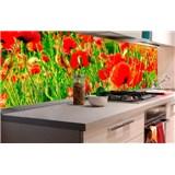 Samolepiace tapety za kuchynskú linku vlčie maky rozmer 180 cm x 60 cm
