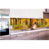 Samolepiace tapety za kuchynskú linku les v jeseni rozmer 260 cm x 60 cm