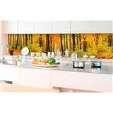 Samolepiace tapety za kuchynskú linku les v jeseni rozmer 350 cm x 60 cm