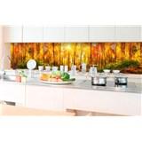 Samolepiace tapety za kuchynskú linku slnečný les rozmer 350 cm x 60 cm