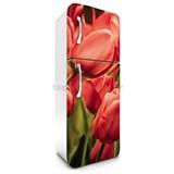 Samolepiace tapety na chladničku tulipány rozmer 180 cm x 65 cm