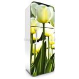 Samolepiace tapety na chladničku žlté tulipány rozmer 180 cm x 65 cm