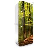 Samolepiace tapety na chladničku les na jeseň rozmer 180 cm x 65 cm
