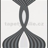 Vliesové tapety na stenu Panels strieborno-čierne